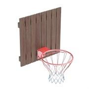 Кольцо баскетбольное со щитом TL
