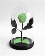 Роза в колбе Mini LIGHT GREEN (светло-зеленая)