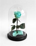Роза в колбе Mini TIFFANY (Тиффани)