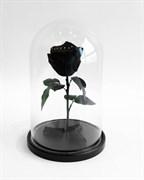 Роза в колбе Mini BLACK (черная)