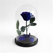 Роза в колбе Mini BLUE (синяя)