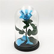 Роза в колбе Premium SKY BLUE (голубая)