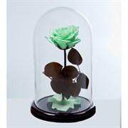 Роза в колбе VIP LIGHT GREEN (светло-зеленая)