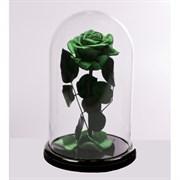 Роза в колбе VIP GREEN (зеленая)