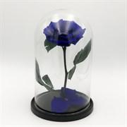 Роза в колбе VIP BLUE (синяя)