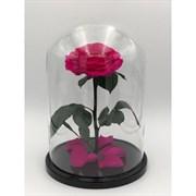 Роза в колбе King Size PINK (фуксия)
