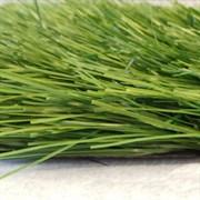 Искусственная трава для спортивных объектов DiaSport Standart М40, 4м