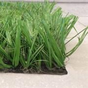 Искусственная трава для спортивных объектов Eurofield TT375, 4м