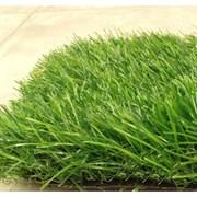 Искусственная ландшафтная трава PVHGrass Green 50, 2м